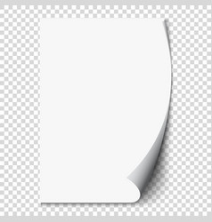 New white page curl on blank sheet isolated paper vector