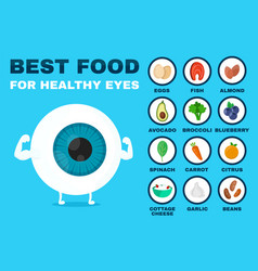 best food for healthy eye strong eyeball vector image vector image