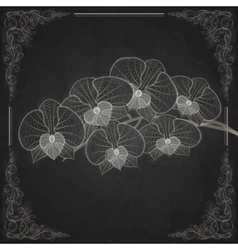 Stylized Drawing With Chalk On Blackboard vector image