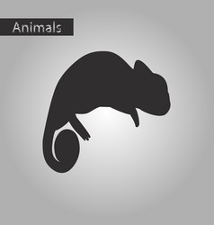 black and white style icon of chameleon vector image