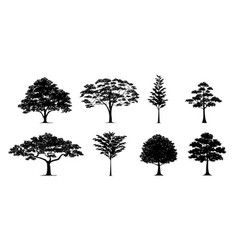 Silhouette tree set vector