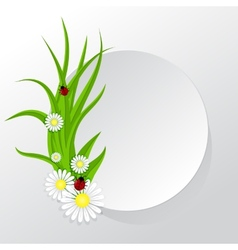 Circle frame with grass and chamomiles vector image