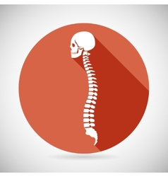 Skull and Spine Icon Symbol Concept Flat Design vector image