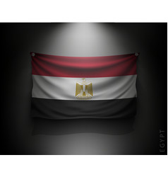 waving flag egypt on a dark wall vector image vector image