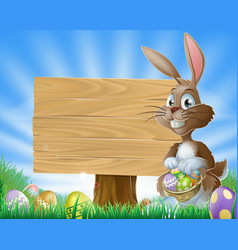 easter bunny rabbit background vector image vector image