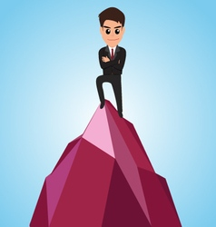 Successful businessman happy on the mountain vector image vector image