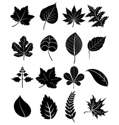 Leaf icons set vector
