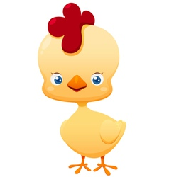 Cute little chicken vector image