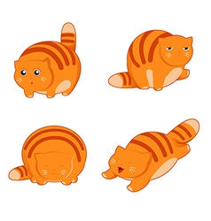 Fat cat icons vector image vector image