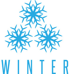 Winter design concept with three snowflakes vector