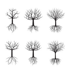 set black trees without leafs vector image