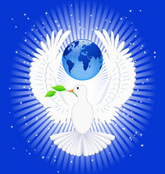 Dove and globe vector