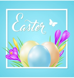 Easter card with eggs and violet crocuses vector