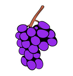 Grape branch icon cartoon vector