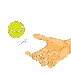 hand with tennis ball vector image