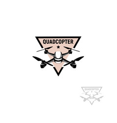 Isolated triangular shape pink color quadrocopter vector