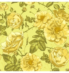 Beautiful Vintage Seamless Roses Background vector image