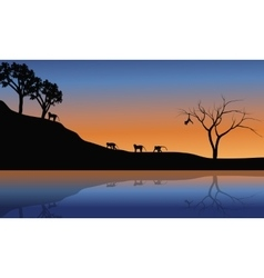 Family monkey in riverbank scenery vector image