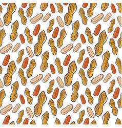 Cute seamless pattern with peanuts sketched vector