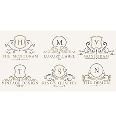 Retro royal vintage shields luxury logo vector