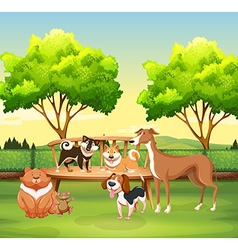 Different kind of pet in the park vector