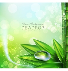 Green background with leaves and dew drops vector