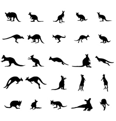 Kangaroo silhouettes set vector