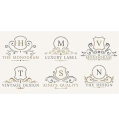 Retro Royal Vintage Shields Luxury logo vector image vector image