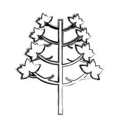 Tree plant autumn icon vector