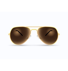 Pilot sunglasses vector