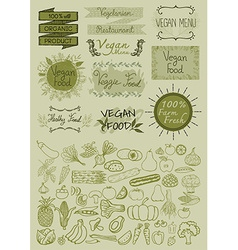 Hand drawn vegan elements vector image vector image