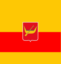 flag of lodz poland vector image