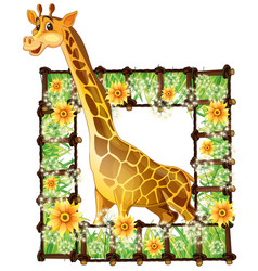 giraffe and flower frame vector image