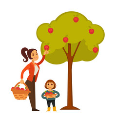 Mother and daughter picking apples from tree to vector