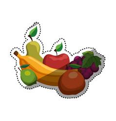Delicious and healthy food vector