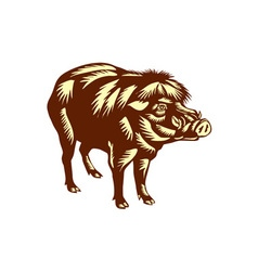 Philippine warty pig woodcut vector