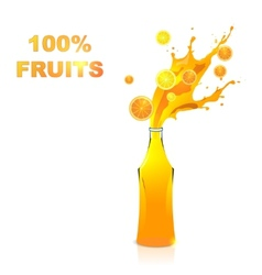 Fruits juices collection  orange and lemon vector