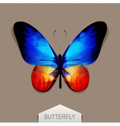 Butterfly with blue-orange wings vector