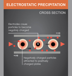 Electrostatic vector