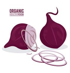 Organic healthy food onion sliced vector