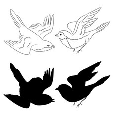 the outline and silhouette birds set of six vector image vector image