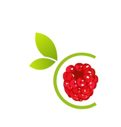 Raspberry logo vector