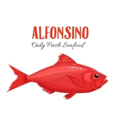 Alfonsino Fish in cartoon vector image vector image