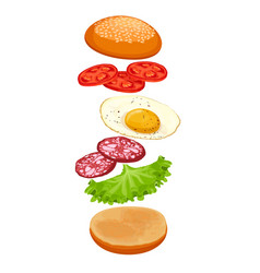 burger with ingredients isolated on white crispy vector image vector image