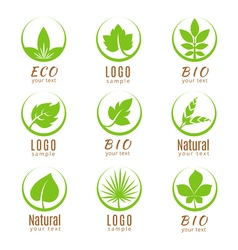 Nature logo set or ecology labels with green vector image vector image