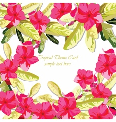 Pink fuchsia summer flowers background vector