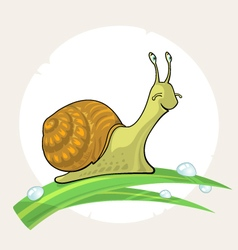 Cute cartoon Snail on grass vector image