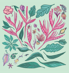 pink and turquoise tropical plants vector image