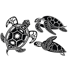 turtles vector image