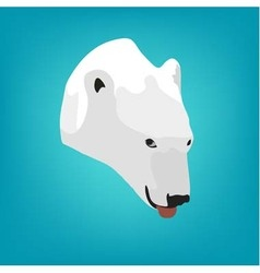 Polar bears head on a blue background eps 10 vector